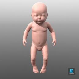 modèle 3d bébé