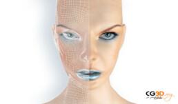 Visage en Wireframes / Fil de fer 3D
