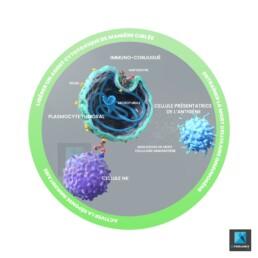 image 3d cellules - illustration médicale oncologie